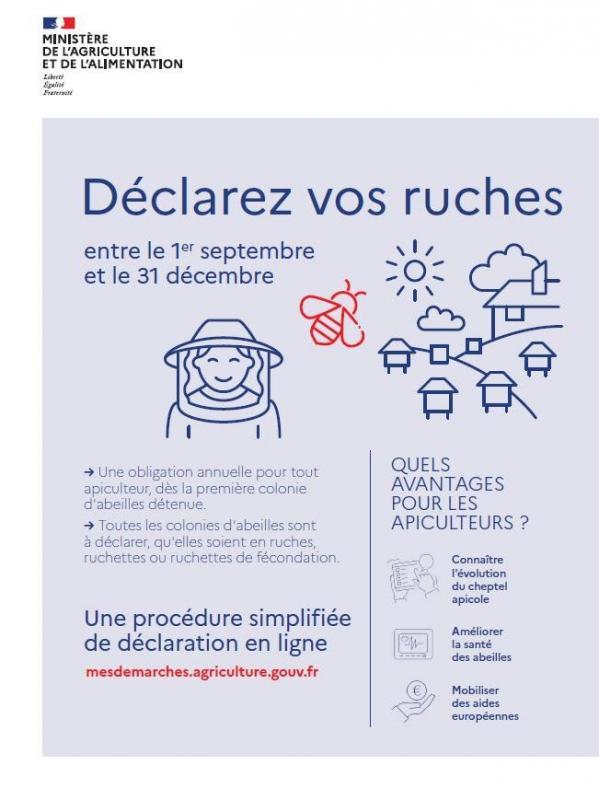 200915 declaration ruches photo