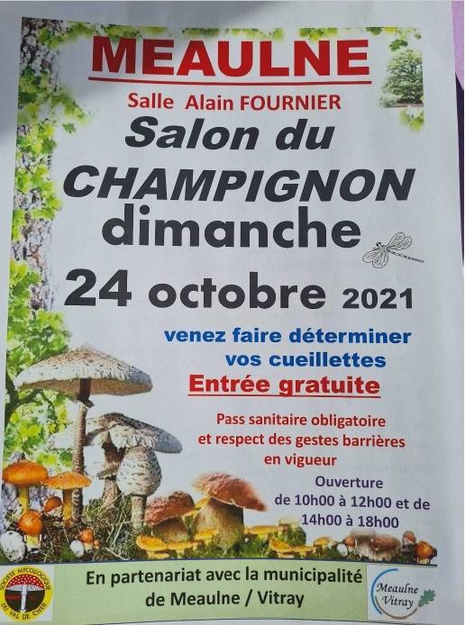 211024 salon champignons