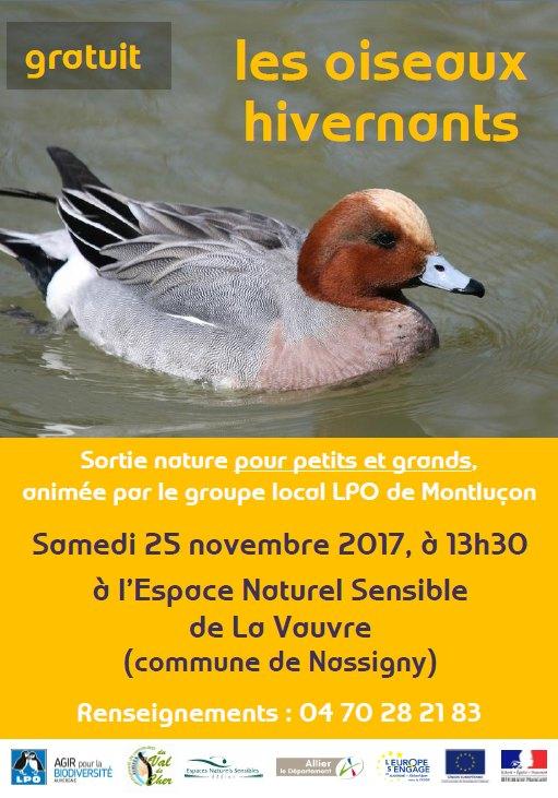 251117 affiche oiseaux hivernants